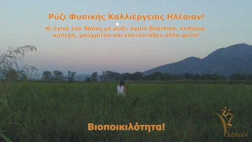Orizonas_Aug13_01-128